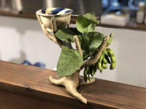 月曜から夜ふかし 嫁ニー 平良司さん 木になる枝豆